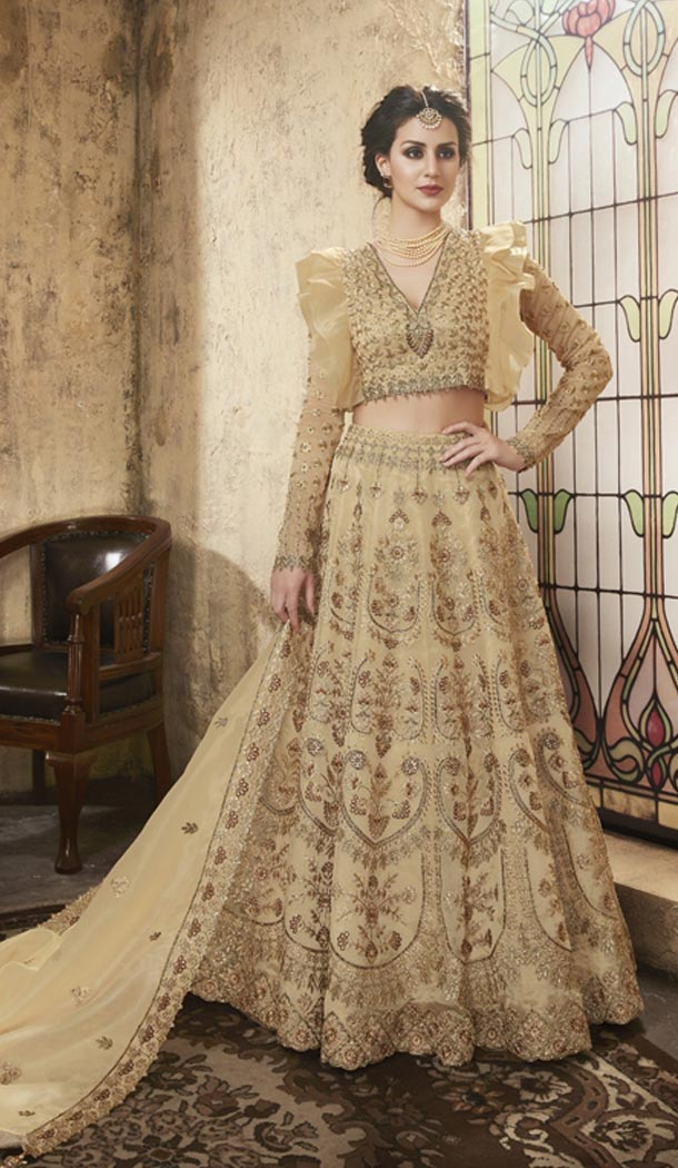Beige Color Net Heavy Embroidery Designer Lehenga Choli - 431152696