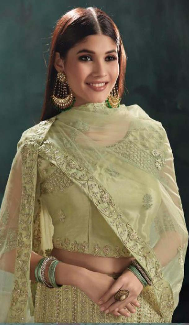 Light Green Color Mono Net Designer Fancy Lehenga Choli -454664751