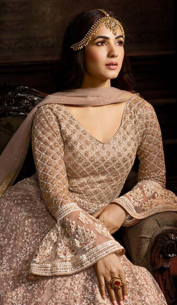 Light Brown Color Net Designer Style Wedding Wear Salwar Kameez -637679780